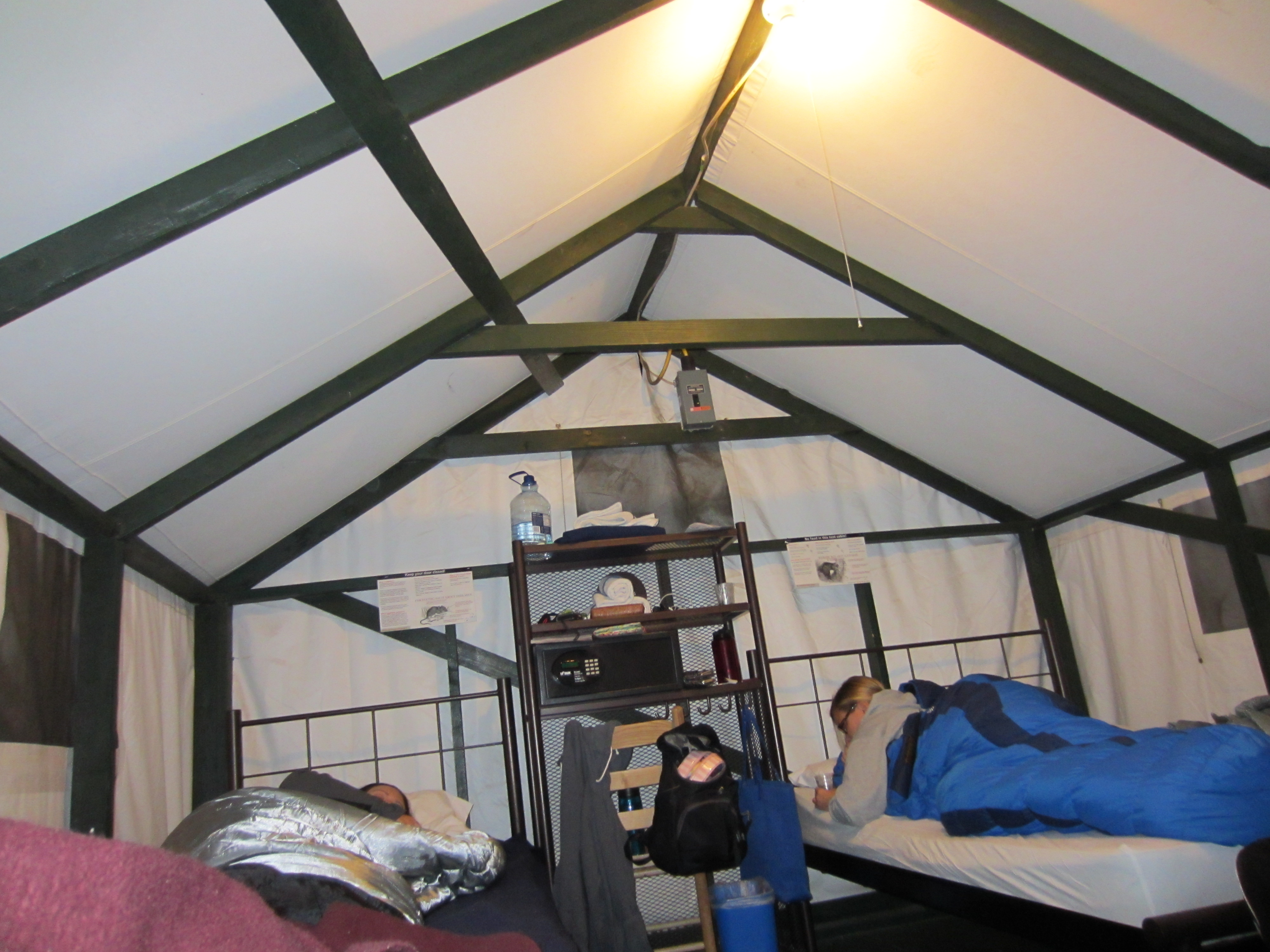 Curry Village Tent cabin & Curry Village Tent cabin   On The Go Mutts